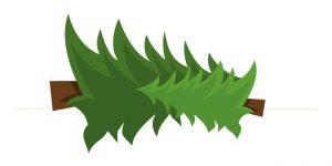 Déchets verts composés de sapin